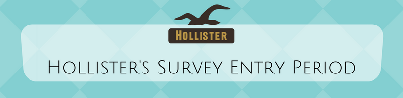 Hollister Customer Satisfaction Survey